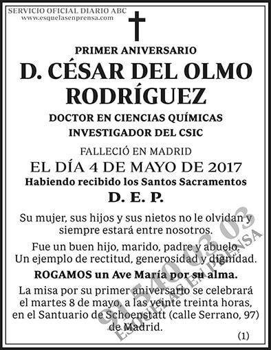 César del Olmo Rodríguez